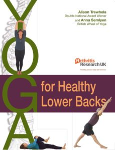 Yoga for Back Pain Book